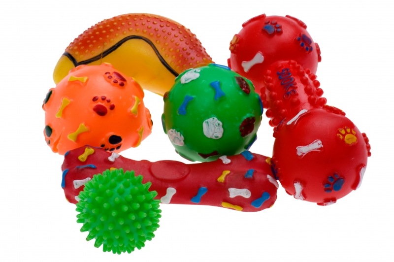 plastic-toy-for-dog-close-up